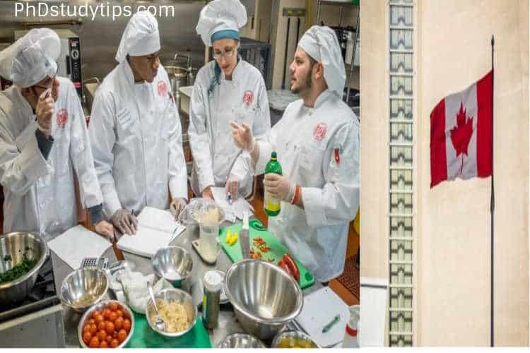 PhD in Food Science in Canada- How Doctorate in Food Science